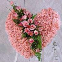kalp pano karankil ve güller   Burdur internetten çiçek siparişi