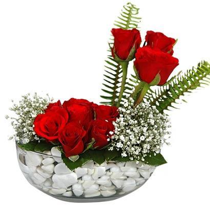 cam içerisinde 9 adet kirmizi gül  Burdur çiçek siparişi vermek