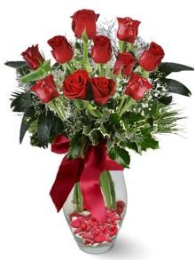 9 adet gül  Burdur internetten çiçek satışı  kirmizi gül