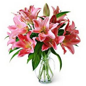 3 dal kazablanka görsel vazosu  Burdur internetten çiçek siparişi