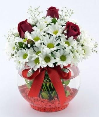 Fanusta 3 Gül ve Papatya  Burdur internetten çiçek satışı