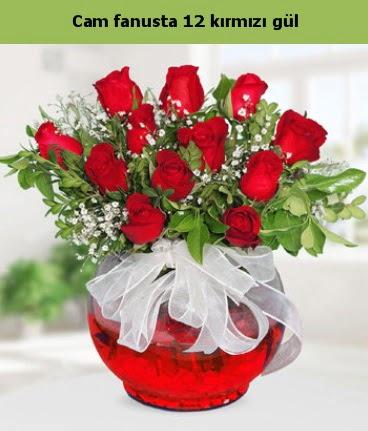 Cam içerisinde 12 adet kırmızı gül  Burdur internetten çiçek satışı