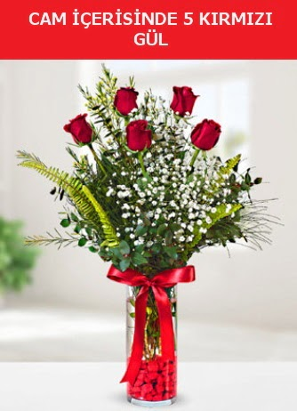Cam içerisinde 5 adet kırmızı gül  Burdur çiçek siparişi sitesi