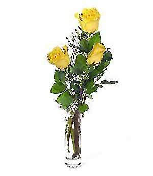 Burdur internetten çiçek siparişi  3 adet kalite cam yada mika vazo gül