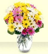 Burdur internetten çiçek siparişi  mevsim çiçekleri mika yada cam vazo