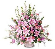 Burdur çiçek siparişi sitesi  Tanzim mevsim çiçeklerinden çiçek modeli