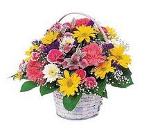 Burdur çiçek , çiçekçi , çiçekçilik  mevsim çiçekleri sepeti özel