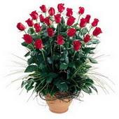 Burdur uluslararası çiçek gönderme  10 adet kirmizi gül cam yada mika vazo