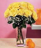 Burdur internetten çiçek satışı  9 adet sari güllerden cam yada mika vazo