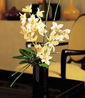 Burdur çiçekçiler  cam yada mika vazo içerisinde dal orkide