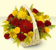 Burdur 14 şubat sevgililer günü çiçek  sepette mevsim çiçekleri