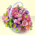 Burdur yurtiçi ve yurtdışı çiçek siparişi  bir sepet dolusu kir çiçegi  Burdur çiçek gönderme sitemiz güvenlidir