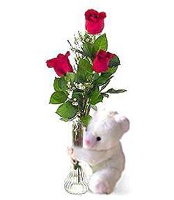 oyuncak ve 3 adet gül  Burdur çiçek siparişi sitesi