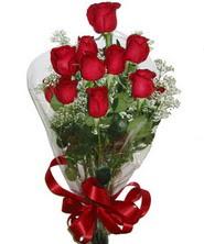 9 adet kaliteli kirmizi gül   Burdur online çiçekçi , çiçek siparişi
