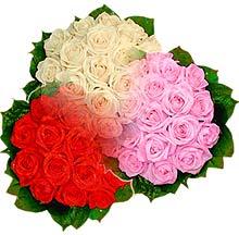 3 renkte gül seven sever   Burdur çiçek , çiçekçi , çiçekçilik