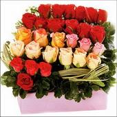 15 adet renkli gül ve cam   Burdur çiçekçi mağazası