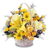 sadece sari çiçek sepeti   Burdur çiçek gönderme sitemiz güvenlidir