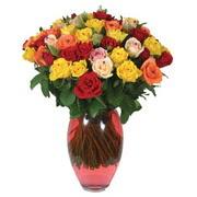 51 adet gül ve kaliteli vazo   Burdur çiçek gönderme sitemiz güvenlidir