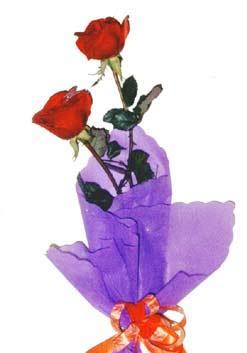 2  adet kirmizi gül buketi   Burdur çiçek , çiçekçi , çiçekçilik