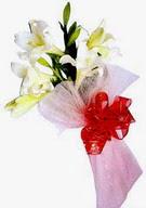 Burdur çiçek , çiçekçi , çiçekçilik  ince vazoda gerbera ve ayi