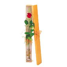ince  kutuda  1  gül   Burdur çiçek yolla