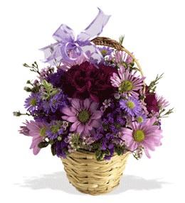 Burdur uluslararası çiçek gönderme  sepet içerisinde krizantem çiçekleri