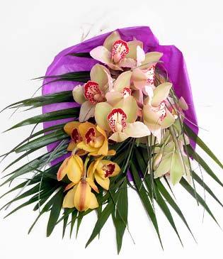 Burdur cicekciler , cicek siparisi  1 adet dal orkide buket halinde sunulmakta