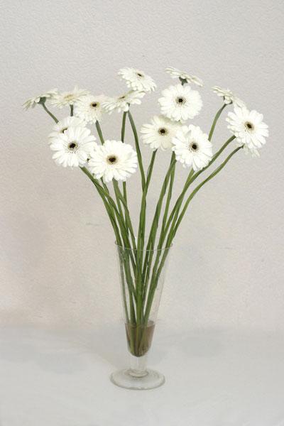Burdur çiçek mağazası , çiçekçi adresleri  cam vazo içerisinde 17 adet sade gerbera