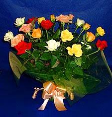 Burdur hediye çiçek yolla  13 adet karisik renkli güller