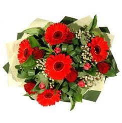 Burdur ucuz çiçek gönder   5 adet kirmizi gül 5 adet gerbera demeti