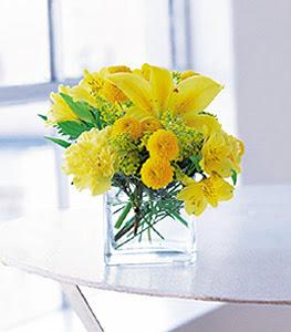 Burdur ucuz çiçek gönder  sarinin sihri cam içinde görsel sade çiçekler
