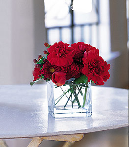 Burdur ucuz çiçek gönder  kirmizinin sihri cam içinde görsel sade çiçekler