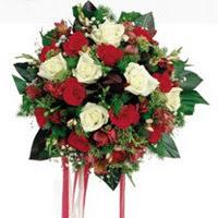 Burdur ucuz çiçek gönder  6 adet kirmizi 6 adet beyaz ve kir çiçekleri buket
