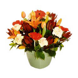 mevsim çiçeklerinden karma aranjman  Burdur çiçek yolla , çiçek gönder , çiçekçi