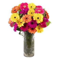 KARISIK GERBERALARDAN CAM VAZO TANZIMI  Burdur güvenli kaliteli hızlı çiçek