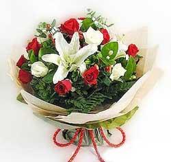 güller ve kazablanklardan görsel bir buket  Burdur internetten çiçek satışı