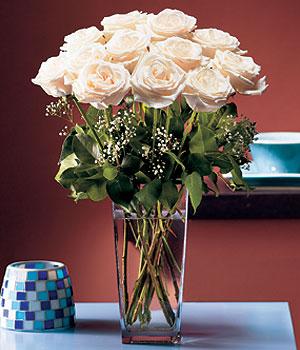 Burdur hediye sevgilime hediye çiçek  Cam yada mika vazo içerisinde 12 gül
