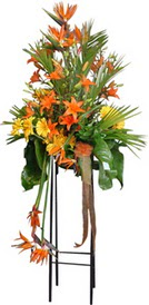 Burdur çiçek siparişi sitesi  perförje tanzimi dügün nikah ve açilislara