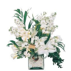Burdur internetten çiçek siparişi  sadece beyazlardan olusmus mevsim cam yada mika tanzim