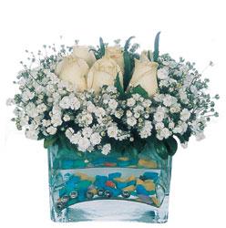 Burdur çiçekçi mağazası  mika yada cam içerisinde 7 adet beyaz gül