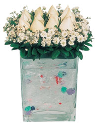 Burdur çiçekçi mağazası  7 adet beyaz gül cam yada mika vazo tanzim