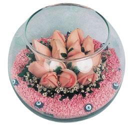 Burdur internetten çiçek satışı  cam fanus içerisinde 10 adet gül