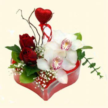 Burdur hediye sevgilime hediye çiçek  1 kandil orkide 5 adet kirmizi gül mika kalp