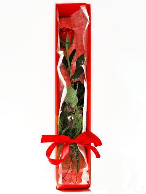 Burdur yurtiçi ve yurtdışı çiçek siparişi  1 adet kutuda gül
