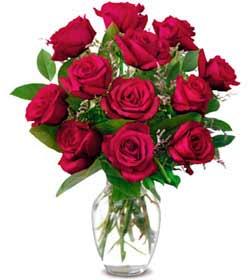 Burdur online çiçek gönderme sipariş  1 düzine kirmizi gül sevenlere özel vazo gülleri