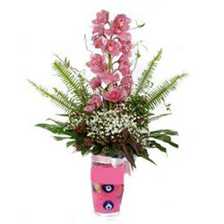 Burdur hediye çiçek yolla  cam yada mika vazo içerisinde tek dal orkide çiçegi
