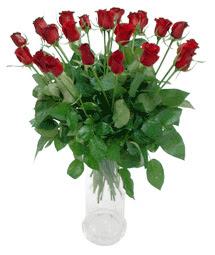 Burdur çiçekçi telefonları  11 adet kimizi gülün ihtisami cam yada mika vazo modeli
