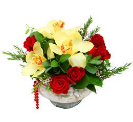Burdur çiçek gönderme  1 adet orkide 5 adet gül cam yada mikada