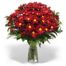 Burdur çiçek yolla  Kir çiçekleri cam yada mika vazo içinde