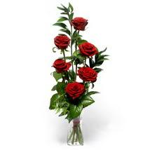 Burdur çiçek siparişi sitesi  cam yada mika vazo içerisinde 6 adet kirmizi gül